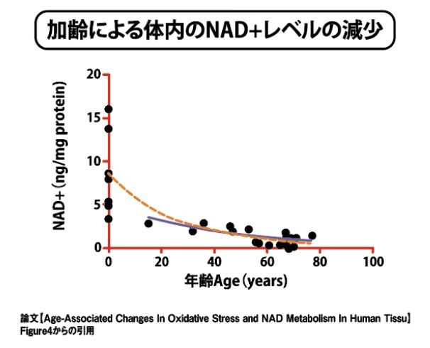 NMN点滴効果グラフ